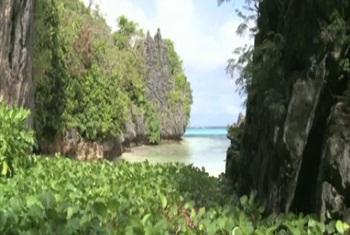 Fiji (UNifeed video capture)
