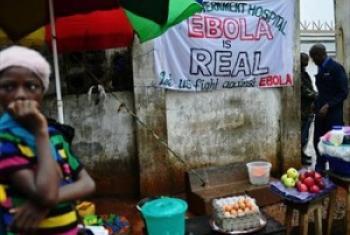Onyo kuhusu athari za ebola mjini Freetown.Agosti 2014.Picha ya FAO