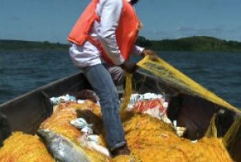 Uvuvi wa samaki katika ziwa Victoria. Picha kutoka video ya UNIFEED.