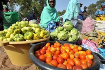 Mchuuzi wa mboga nchini Gambia, moja ya nchi zilizofanikiwa kufikia lengo la kupungzua njaa kwa asilimia 50. (Picha@FAO)