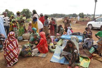 Wakimbizi kutoka CAR wanaokimbilia nchi jirani ya Cameroon(Picha© UNHCR/M.Poletto)