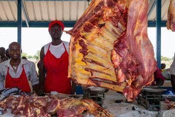 Nyama ambayo haijapikwa vizuri yawezasababisha kuenea kwa virusi mbalimbali vinavyosababisha magonjwa kwa binadamu. (Picha:UN /JC McIlwaine)