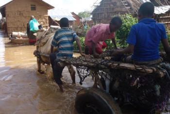Mafuriko Somalia yakisabishwa na kufurika kwa mto Shabelle na Juba(maktaba).