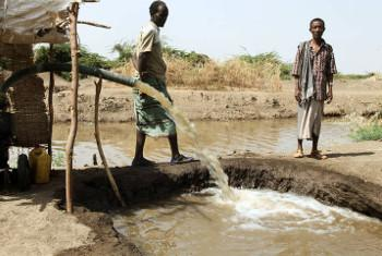 Wafugaji nchini Ethiopia.(Picha;FAO/Tamiru Legesse)