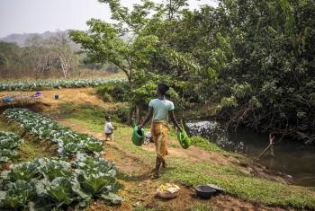 Kilimo kizingatie mabadiliko ya tabianchi. Picha: FAO/Sebastian Lise/Noor