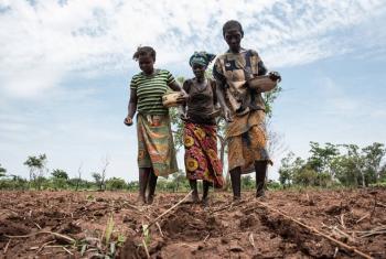 Mchango wa wanawake wa vijijini katika uhakika wa chakula haupaswi kupuuzwa.(Picha:FAO-WFP/Ricci Shryock)