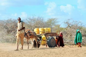 Familia huko Garissa nchini Kenya wanatembea kuelekea sehemu ambayo wataweza kupata maji. Picha: UNICEFKenya/2017/Serem