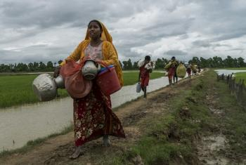 Wakimbizi waRohingya wanapoendelea kumiminika Bangladesh, mashirika wahaha kuwasajili. Picha: UNHCR