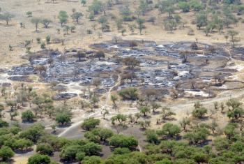Eneo lilolochomwa na ufyatuliaji wa risasi kufuatia uvamizi wa ng'ombe nchini Sudan Kusini. Picha: FAO