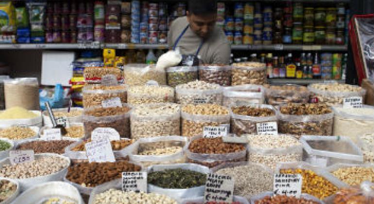 世界粮食署图片