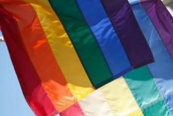 象征多元化的彩虹旗。