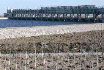 一处位于生态城市中国天津的防洪大坝。世界银行图片/Yang Aijun。