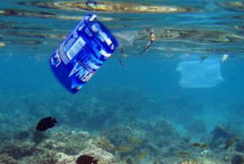 联合国环境署官方微博图片/Kelvin Trautman。