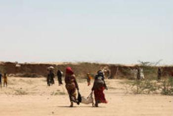 埃塞俄比亚的农民。非洲之角是受厄尔尼诺现象影响最重的地区之一。